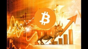 menjalankan bull bitcoin