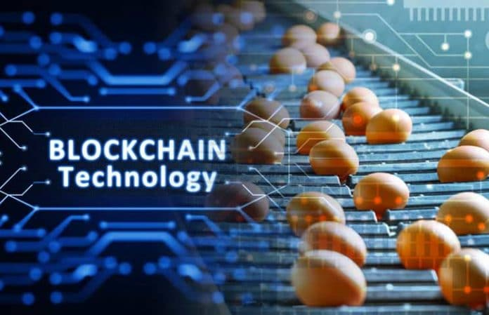 Blockchain-in-the-Food-Industrie