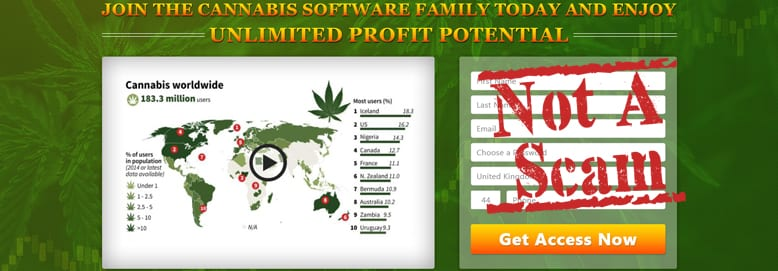 There is No Cannabis Software Scam