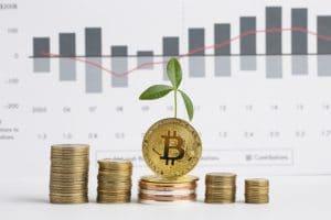 tas de bitcoins